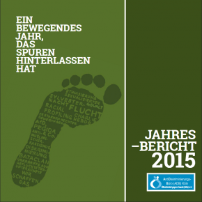 Jahresbericht 2015*